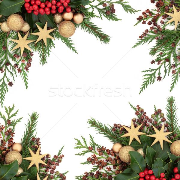 Goud snuisterij christmas grens star decoraties Stockfoto © marilyna