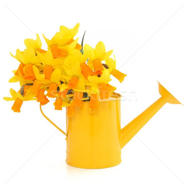 цветы цветок желтый лейка белый Сток-фото © marilyna
