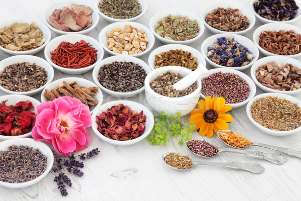 Flower and Herb Medicine Stock photo © marilyna