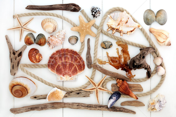 Abstract Beach Art Collage Stock photo © marilyna
