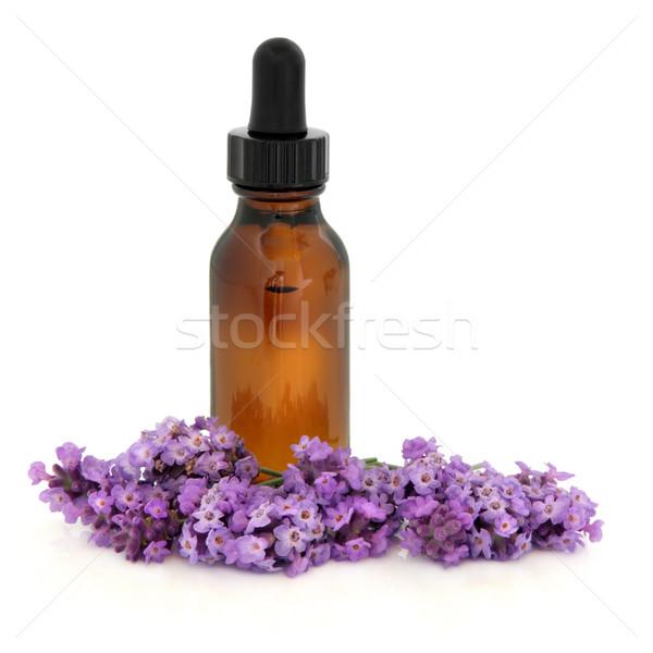 Lavanda fiore essenza erbe aromaterapia Foto d'archivio © marilyna