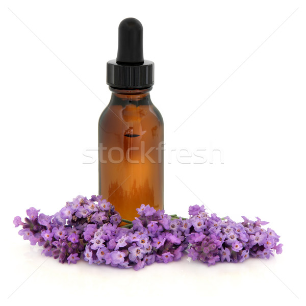 Lavanta çiçek öz ot aromaterapi Stok fotoğraf © marilyna