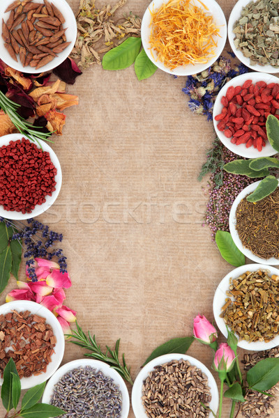 Medicinal and Magical herbs Stock photo © marilyna