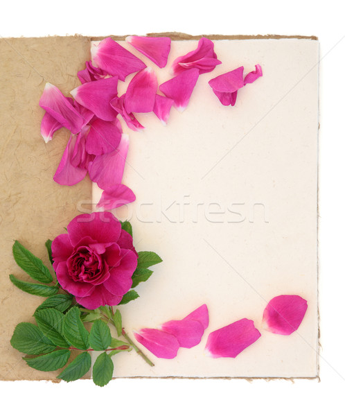 Rose Flower and Notebook Stock photo © marilyna