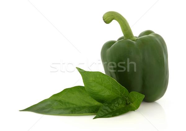Green Pepper Stock photo © marilyna