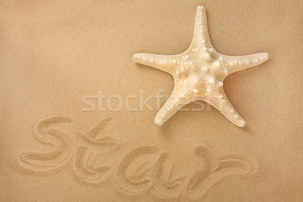 морем звездой Starfish песок слово Сток-фото © marilyna