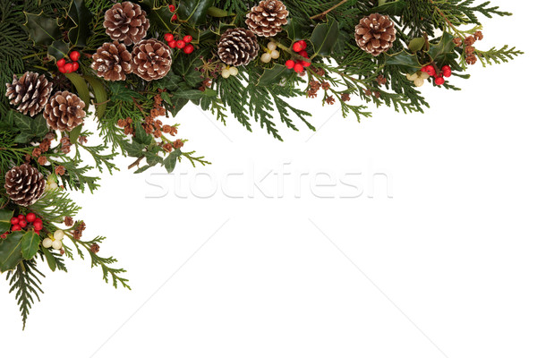 Stock photo: Seasonal  Border