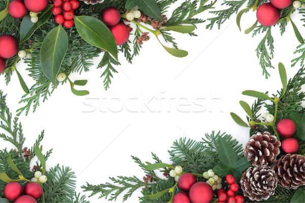 Rood snuisterij grens christmas decoraties maretak Stockfoto © marilyna