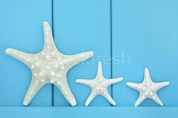 ヒトデ 木製 青 デザイン 芸術 ストックフォト © marilyna