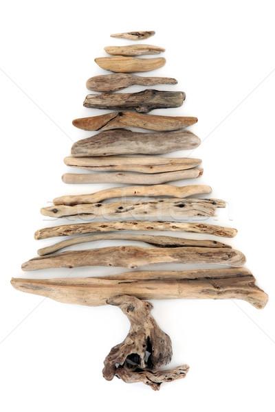 Driftwood drzewo streszczenie biały charakter tle Zdjęcia stock © marilyna