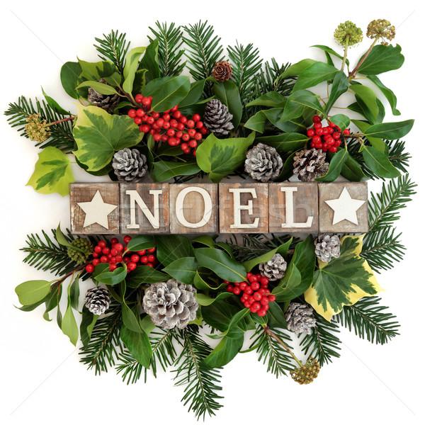 Noel Decoration Stock photo © marilyna