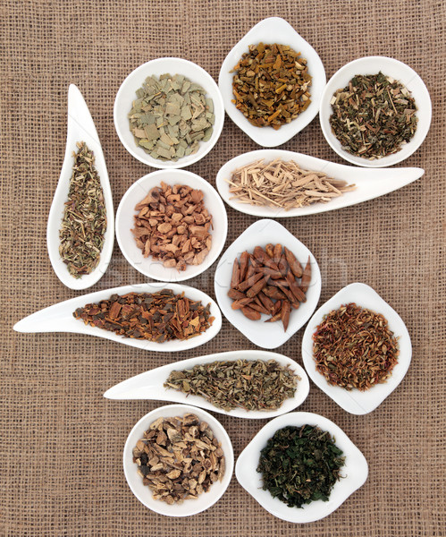 Medicinal and Magical Herbs Stock photo © marilyna