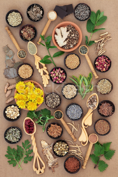 Herbs for Womens Health  Stock photo © marilyna
