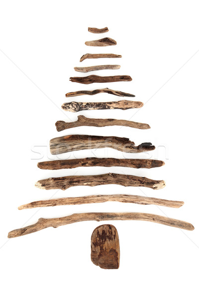 Abstrato troncos árvore branco madeira projeto Foto stock © marilyna