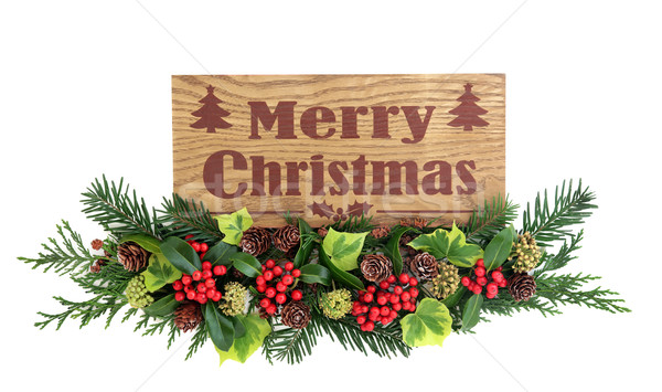 Merry Christmas Sign and Flora Decoration Stock photo © marilyna