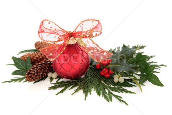 Christmas Bauble and Flora Stock photo © marilyna