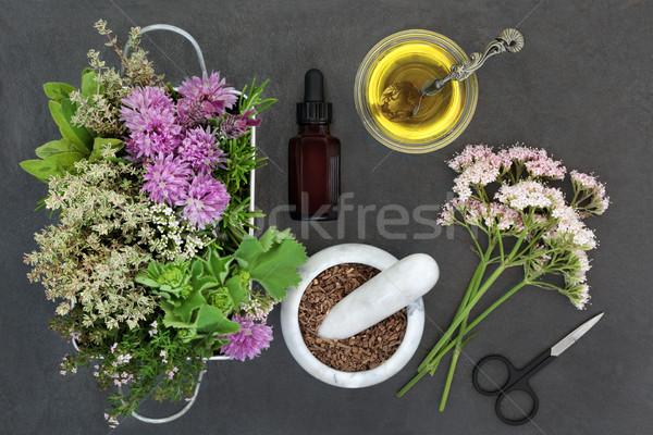 Zdjęcia stock: Naturalnych · przygotowanie · używany · alternatywa · świeże