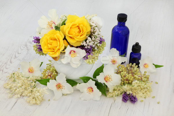 Healing Flowers and Herbs Stock photo © marilyna