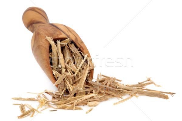 Ginseng raiz erva oliva madeira escavar Foto stock © marilyna