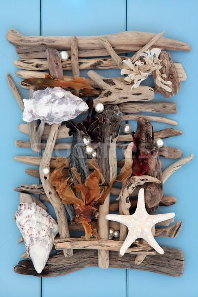 Beach Treasure Abstract Stock photo © marilyna