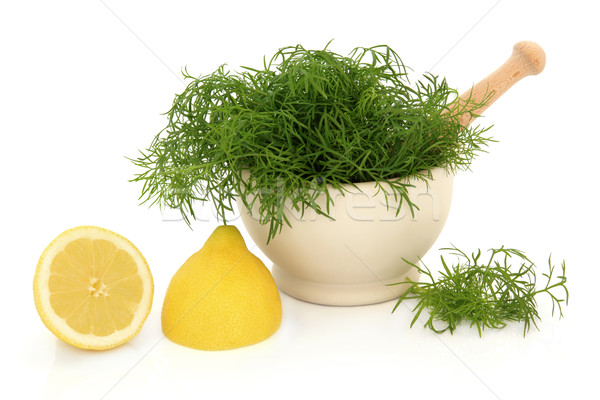 Dill Herb and Lemon  Stock photo © marilyna