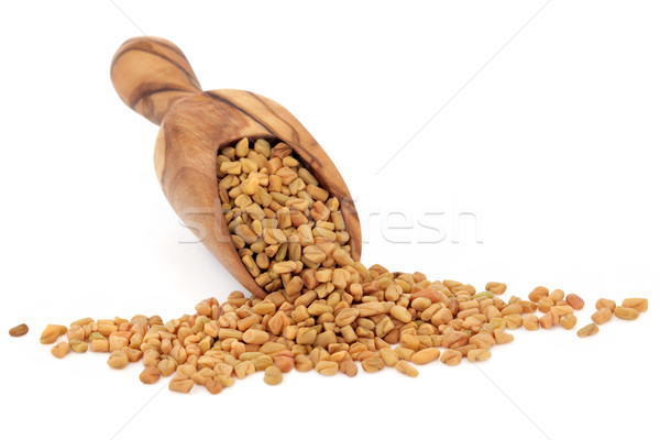 Fenugreek Seed Stock photo © marilyna