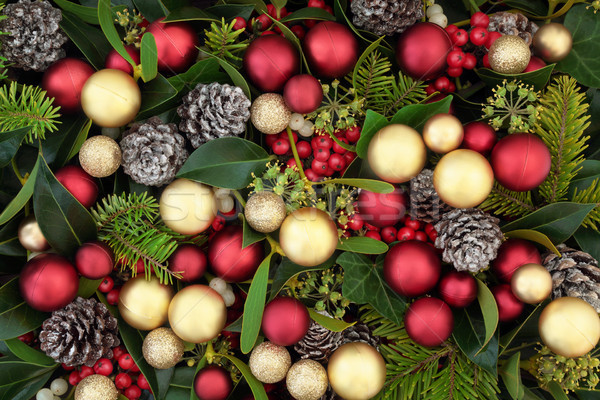 Christmas Decorations and Flora Background Stock photo © marilyna