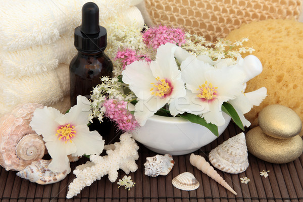 Natural Spa Treatment Stock photo © marilyna