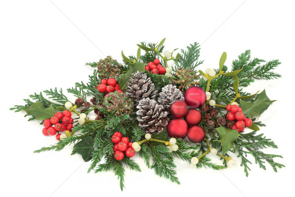 Christmas Decorative Display Stock photo © marilyna