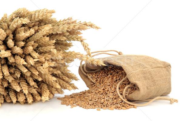 Spelt Wheat Stock photo © marilyna
