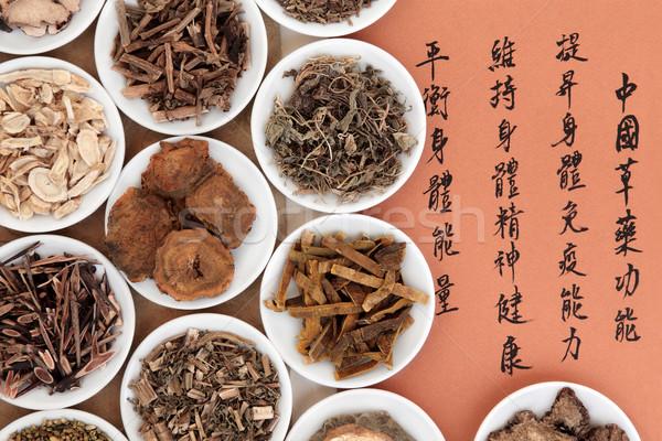 Stok fotoğraf: Çin · çanaklar · kaligrafi · komut