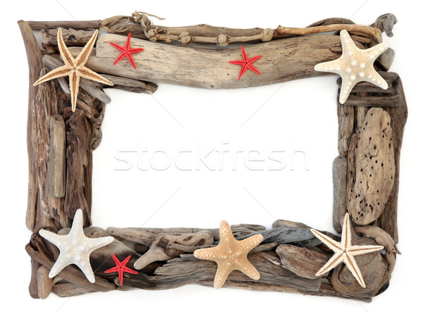 Driftwood and Starfish Frame Stock photo © marilyna