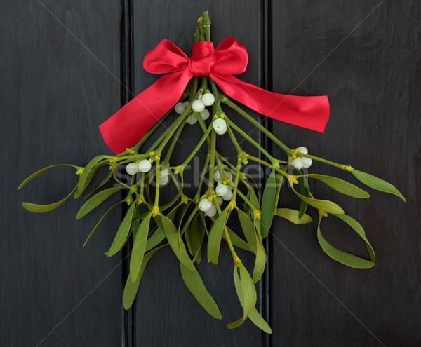 Mistletoe Kisses Stock photo © marilyna