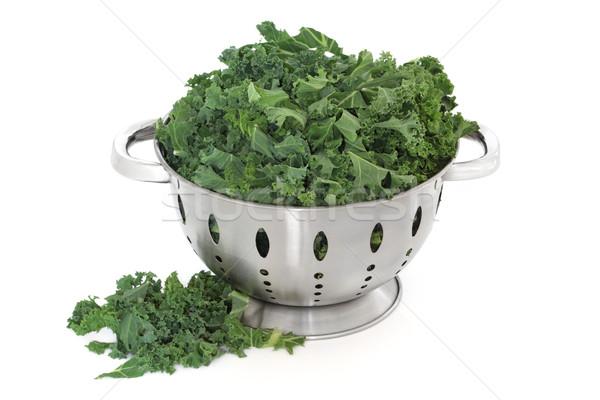 Kale Cabbage Stock photo © marilyna