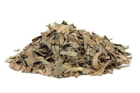 Loquat Leaf Stock photo © marilyna