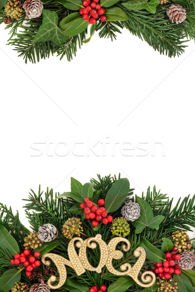 Gold Noel Sign and Flora Border Stock photo © marilyna