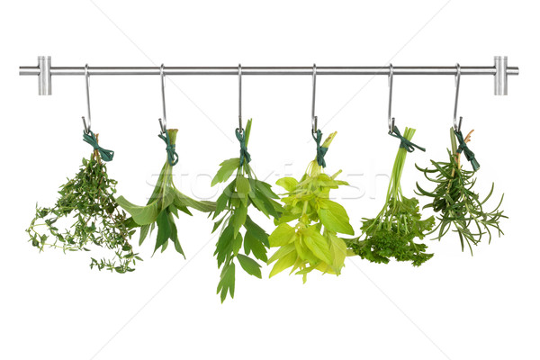 Herbes herbe feuille acier inoxydable rack or Photo stock © marilyna