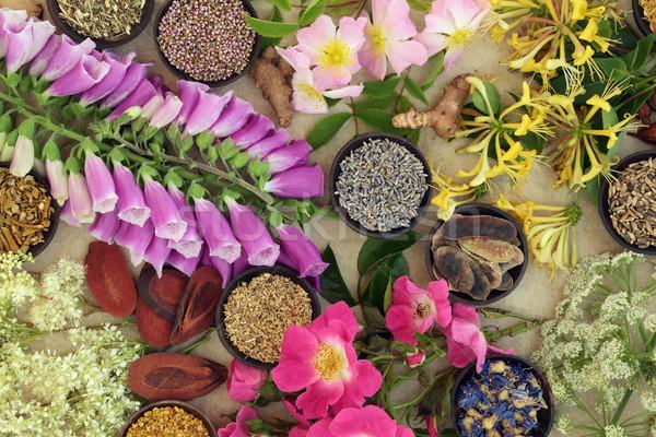 Naturelles fleurs utilisé autre phytothérapie Photo stock © marilyna