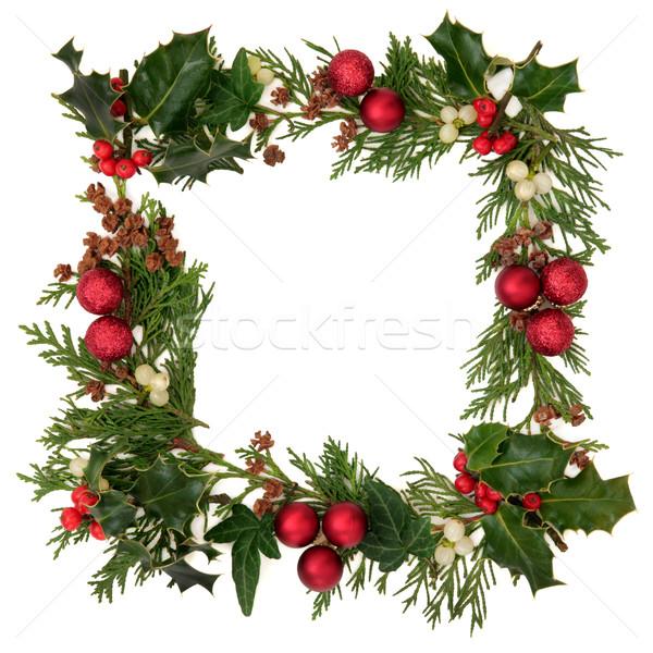 Noel sınır dekoratif sarmaşık ökseotu sedir Stok fotoğraf © marilyna