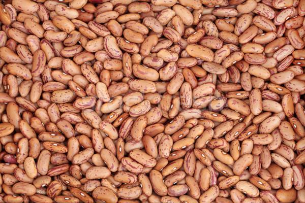 Pinto Beans Stock photo © marilyna