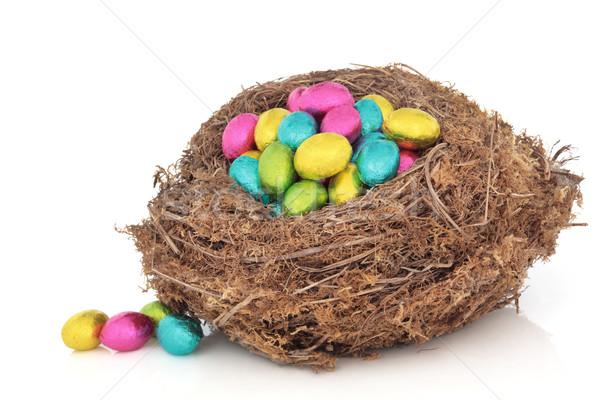 イースターエッグ 巣 クラッチ 自然 鳥の巣 緩い ストックフォト © marilyna