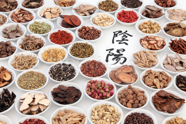Yin and Yang Chinese Herbs Stock photo © marilyna