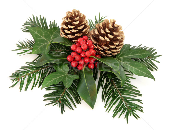 Winter Floral Display Stock photo © marilyna