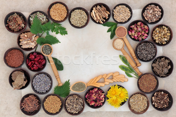 Superfood for Women Stock photo © marilyna