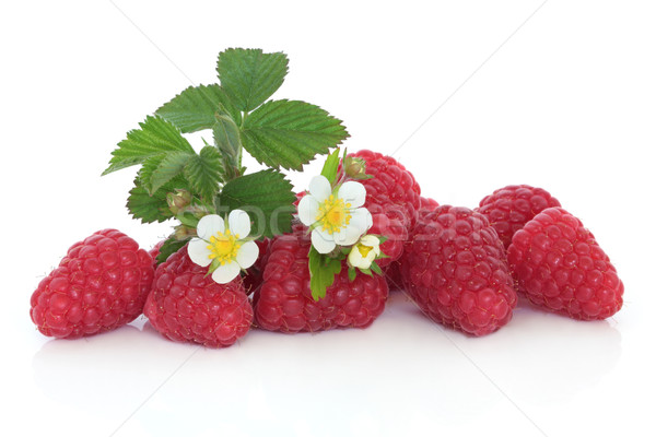 Raspberry Fruit Stock photo © marilyna