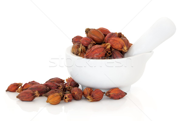 Zdjęcia stock: Owoców · suszy · używany · chińczyk · porcelana