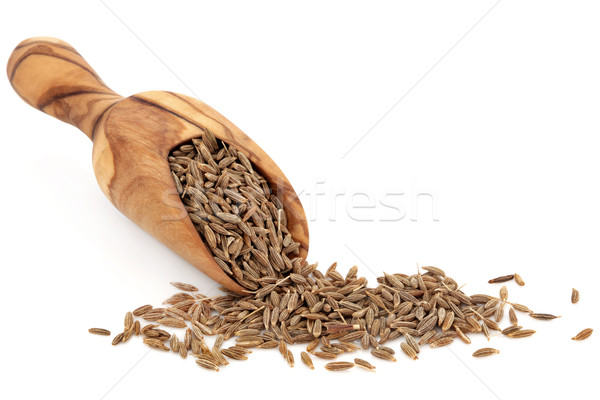 Caraway Seed Stock photo © marilyna