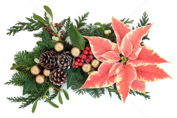 украшение цветок Рождества благодарение золото омела белая Сток-фото © marilyna
