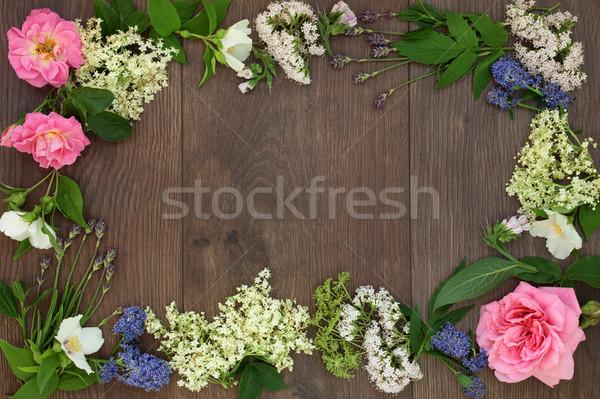Naturelles médecine alternative frontière séché fraîches fleurs Photo stock © marilyna
