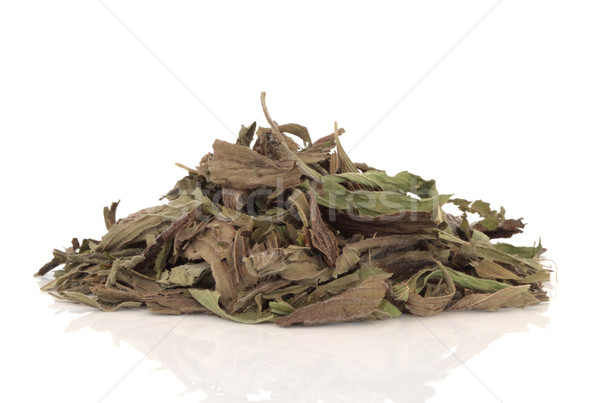 Dried Plantain Herb Leaves Stock photo © marilyna